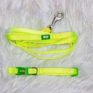 Animal Planet Dog Neon Collar and Leash Small